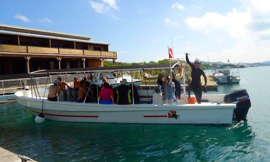 Fun Diving & Courses On The