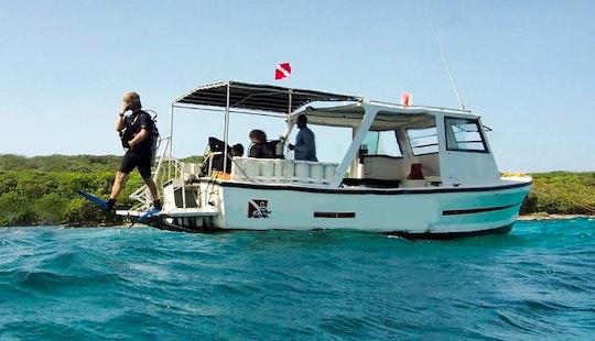 Fun Diving Trips And Padi Scuba Diving Courses In Brick Bay, Honduras