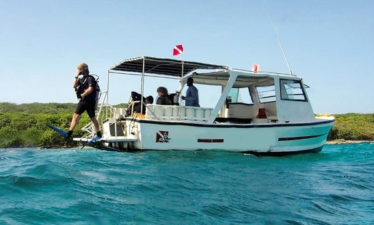 Fun Diving Trips & Padi Courses On The