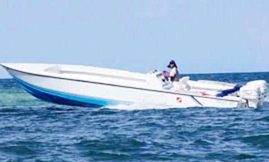 Reef Shark Diving Boat Trips In Playa Asuncion
