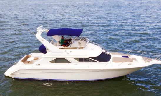 Amazing 44' Sea Ray Fly Bridge Motor Yacht Rental In Miami, Florida