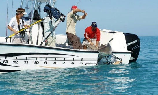 Fishing Charters On 28ft Center  Console In Key West, Florida