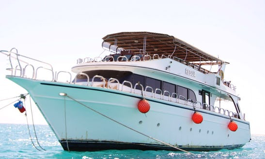 Charter Reglia Motor Yacht In Red Sea Governorate, Egypt