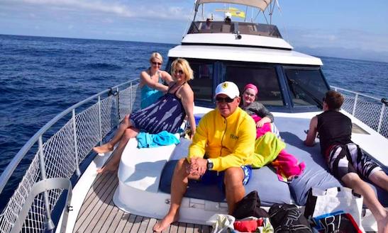 Blue M Yacht Charter
