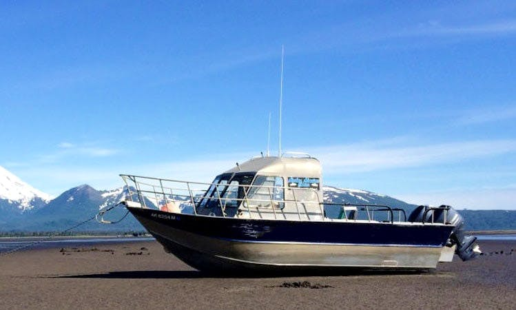 Enjoy 20ft Center Console In Soldotna, Alaska