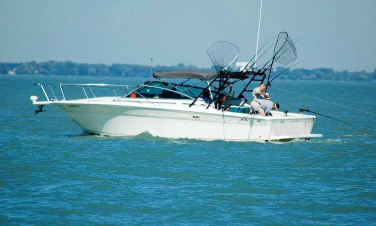 Fishing Charter On 31' Sea Ray Ambel Jack Cuddy Cabin In Saint Clair Shores, Michigan
