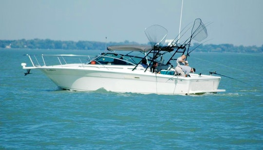 Fishing Charter On 31' Sea Ray Ambel Jack Cuddy Cabin In Saint Clair Shores, Michigan
