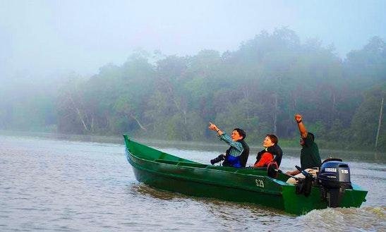 Wildlife Boat Tour For 8 Person In Kota Kinabalu, Malaysia!