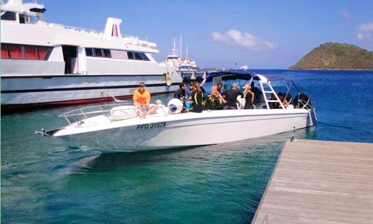 Diving Excursion In Guadeloupe
