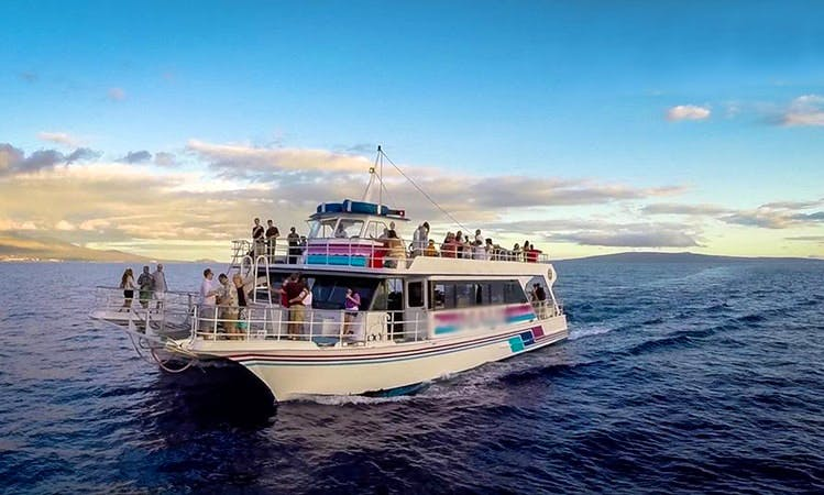 "Whale Watching, Dinner Cruise, & Tours on ""The Pride of Maui"""