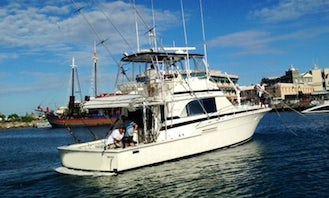 """46ft Bertram """"Shooter"""" Luxury Fishing Boat Charters in St Michael, Barbados"""
