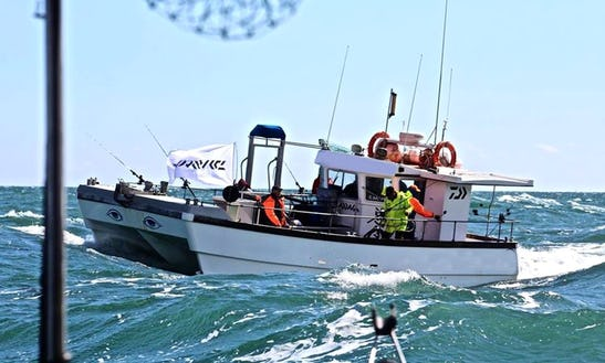 Catamaran Fishing Trips In Brighton, Uk
