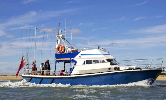 Enjoy Fishing In Portsmouth, England On 40' Cuddy Cabin