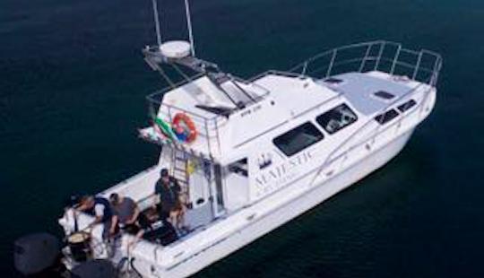 Motor Yacht Rental In Hermanus