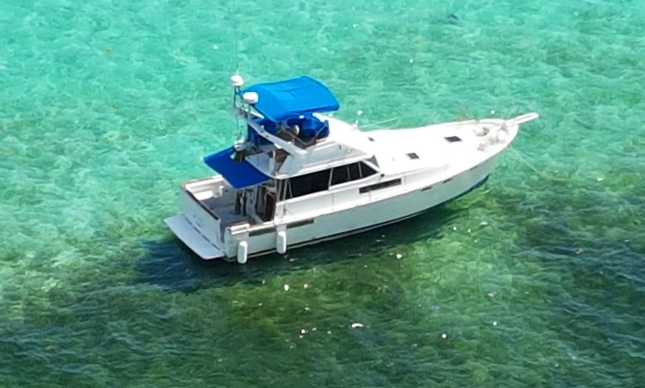 Motor Yacht fishing charter in Dominicus