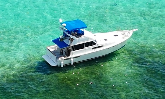 Motor Yacht Fishing Charter In Dominicus