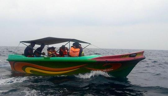 Dolphin Tour In Kudawa