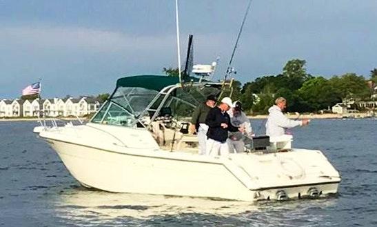 Inshore Saltwater Fishing Charter In Norwalk, Connecticut
