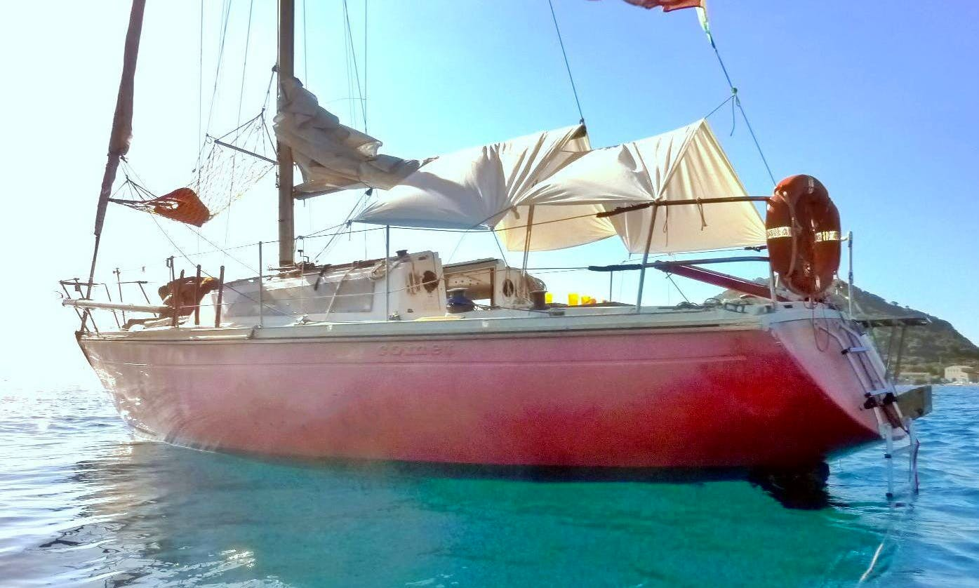 Sailing Cruises to the Island of Elba with Captain Luca