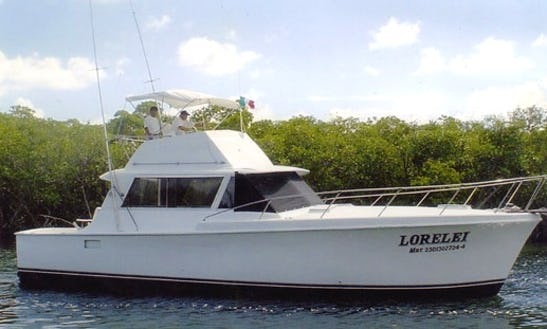 Enjoy Sightseeing Tours And Fishing Trips In Cancún, Mexico On 41' Hateras Sport Fisherman