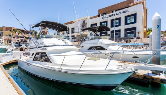 Jump Aboard 29' Sport Fisherman For An Adventurous Fishing Charter In Baja California Sur, Mexico