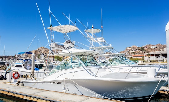Nice 33' Cuddy Cabin Available For Fishing Charter In Baja California Sur, Mexico