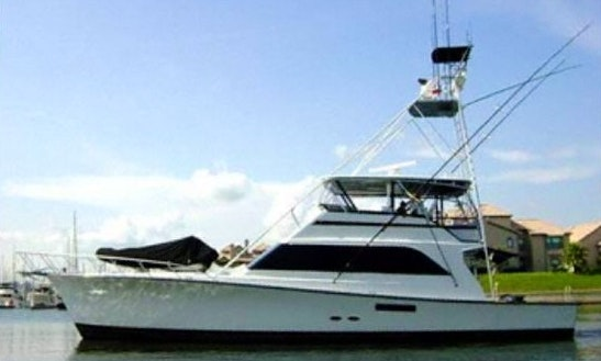 Comfort And Pleasure To Fishing With Class In Cancun, Mexico On Desperado - 60' Ocean Sport Fisherman
