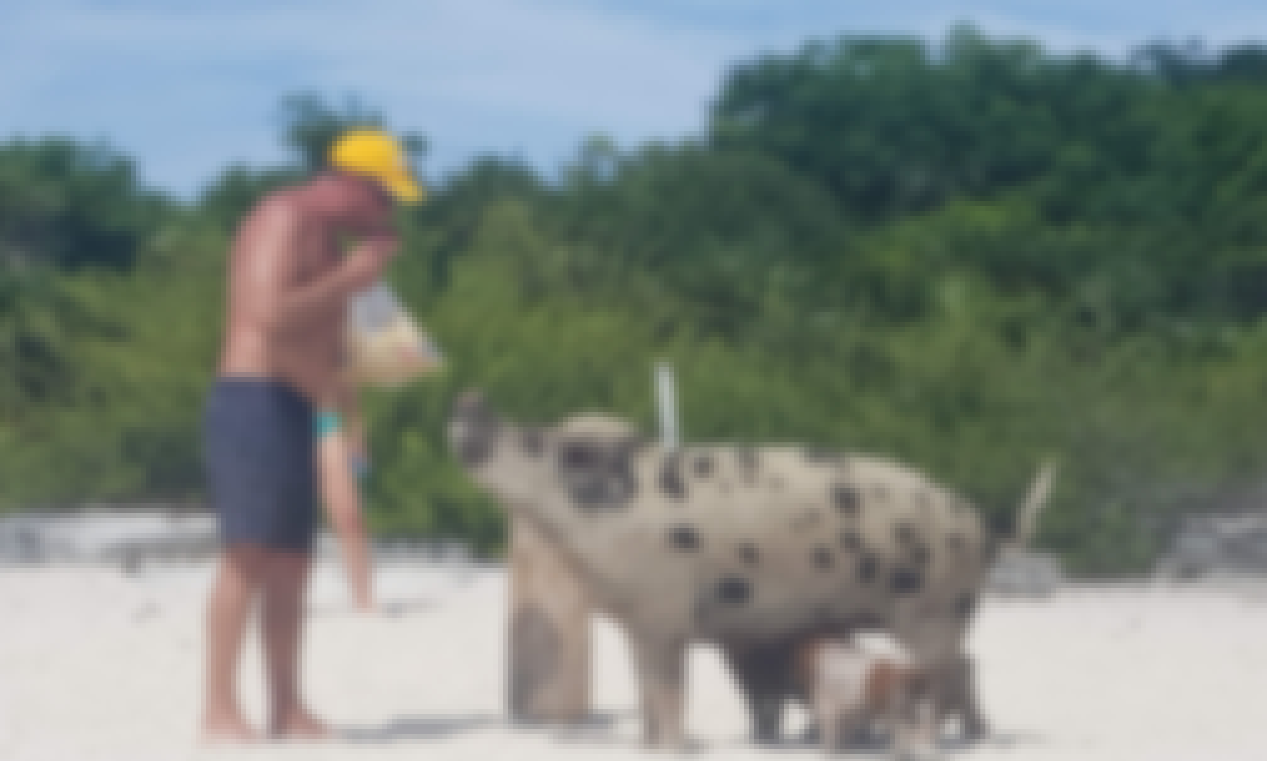 Exuma Tour - Swim with the Pigs