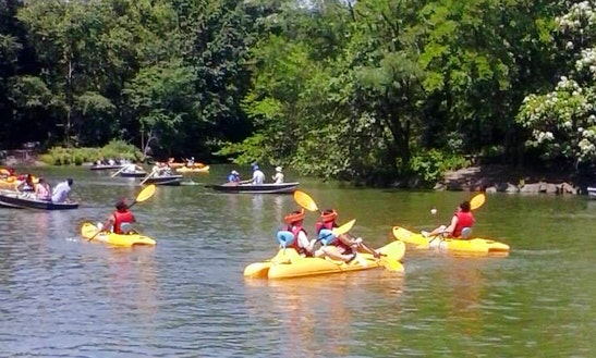Explore And Paddle Along Prospect Park Lake In New York!