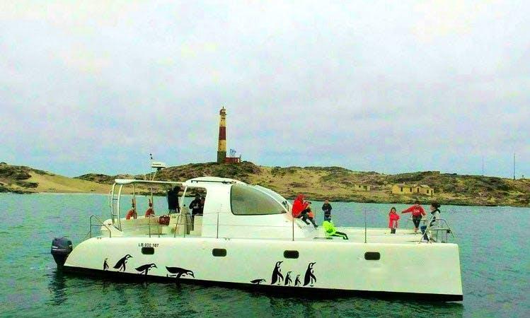 """""""Penguin"""" Catamaran Rental In Luderitz, Namibia"""