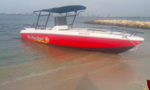 beautiful 28 Ft Speedboat
