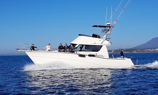 Enjoy Fishing In Marbella, Andalucía On 40' Rodman Sportfisherman