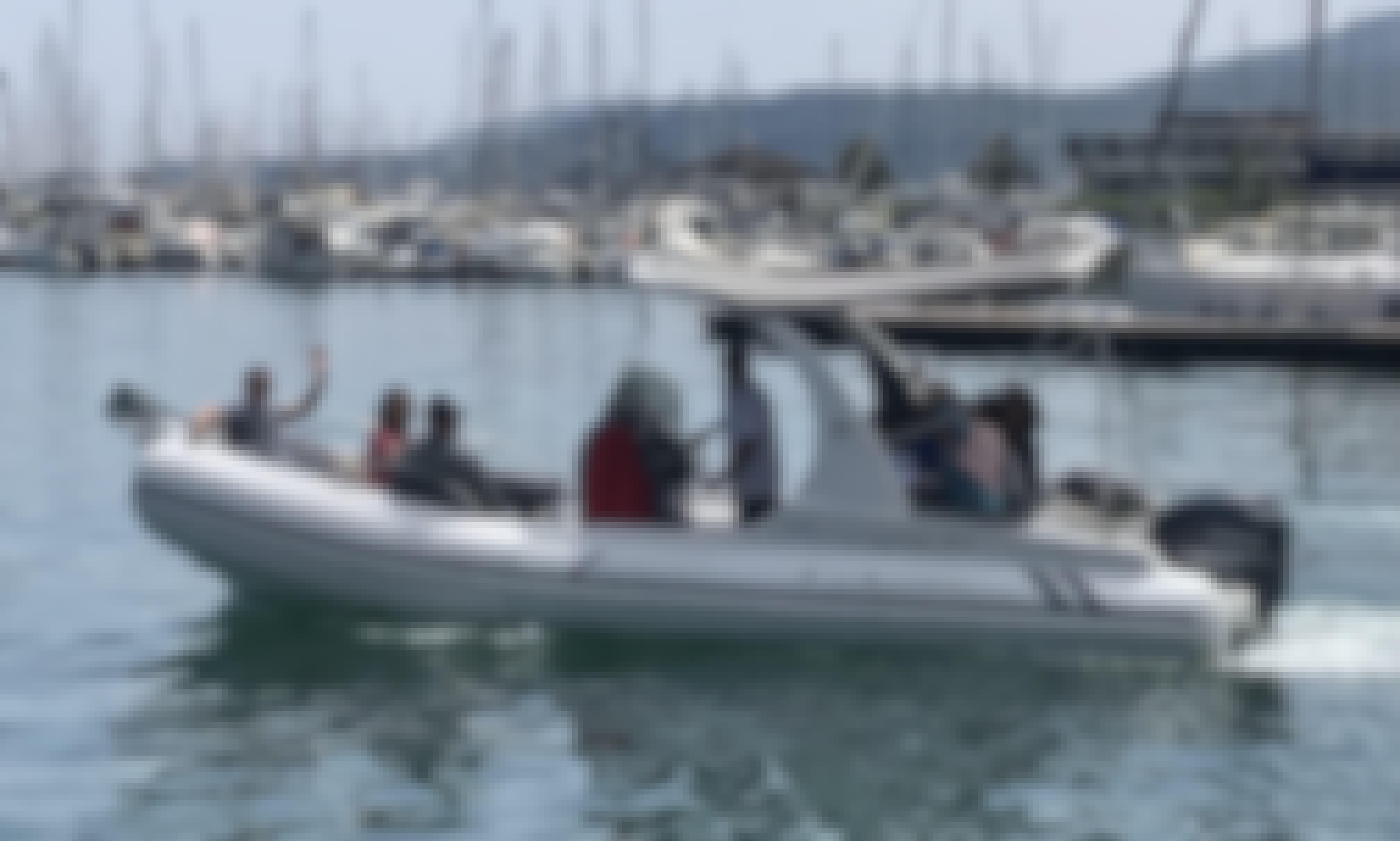 Cinque Terre Tour - Revenger 24 RIB Rental for 8 People in La Spezia, Italy