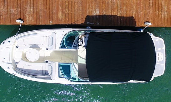 Exclusive Sea Ray 26 Ft