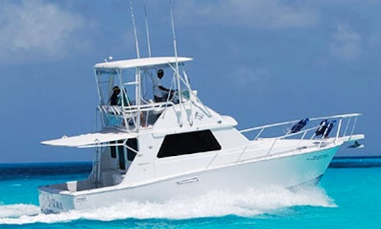 Enjoy Fishing On This 8 Persons 33' Sport Fisherman In Cancún, Mexico For Fishing
