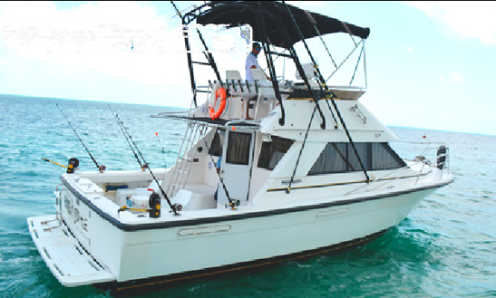 35' Sport Fisherman Fishing Charter In Cancún, Mexico For 8 Persons