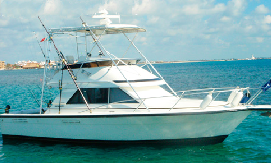 Go Fishing With Friends On This 35' Sport Fisherman In Cancún, Mexico
