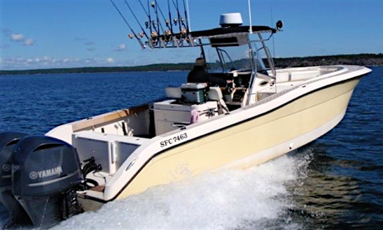 36 Ft Fishing 320 Open Center Console For Fishing In Vaxholm, Stockholms