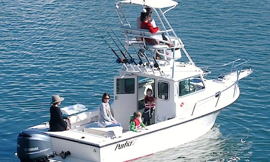 Fishing And Whale Watching Charter In Dana Point, California With Captain Cheyne