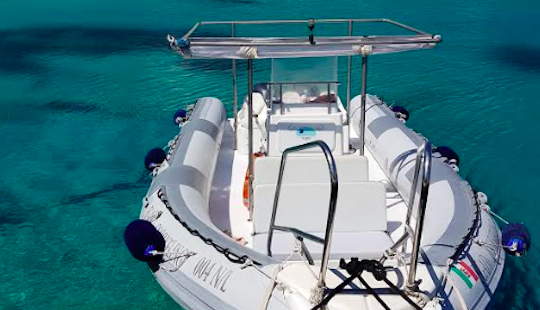 Rib Charters From 12 People From Levanzo