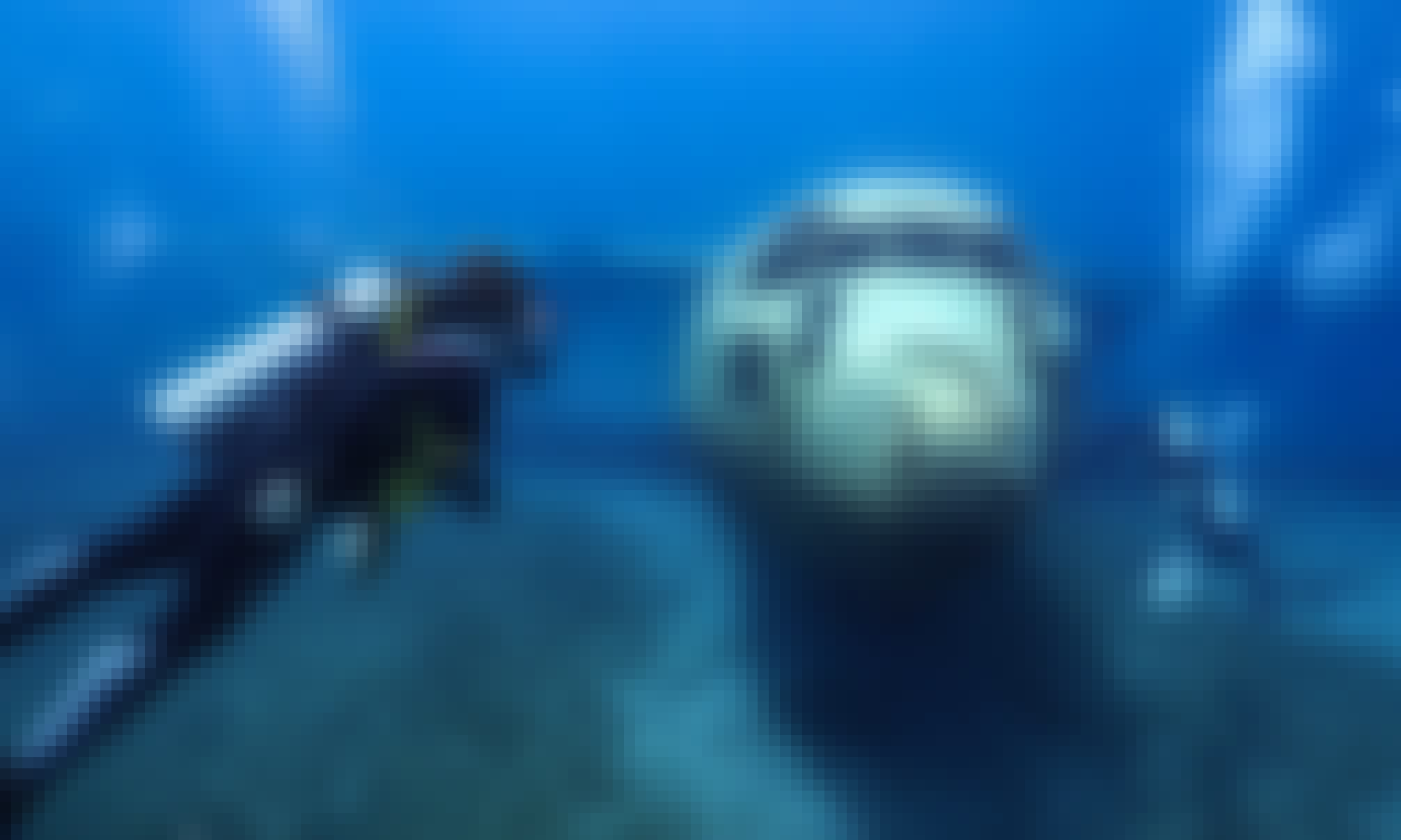 Dive and Explore the amazing underwater world in Ma'an Governorate, Jordan