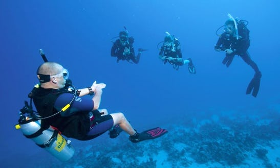 An Amazing Diving Experience In Lebanese Shore