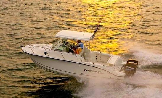 Trophy Pro 250 Cuddy Cabin Fishing Charter In Puerto Vallarta, Mexico
