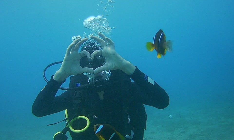 Awesome Diving Trips and Lessons available in Aqaba, Jordan