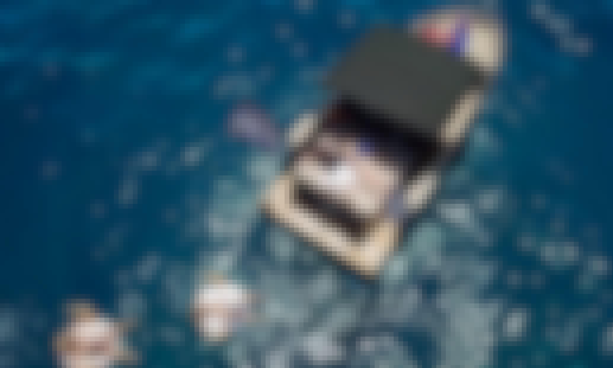 Luxury Yacht - ELEGANCE - Costa Adeje