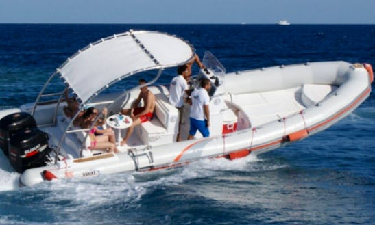 Explore Red Sea Governorate, Egypt On This 6 Persons Rigid Inflatable Boat