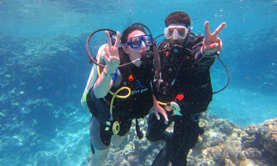 Go And Experience Scuba Diving And Diving Lessons In South Sinai Governorate, Egypt