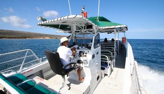 Private Custom Charters - Sanity Snorkel Vessel