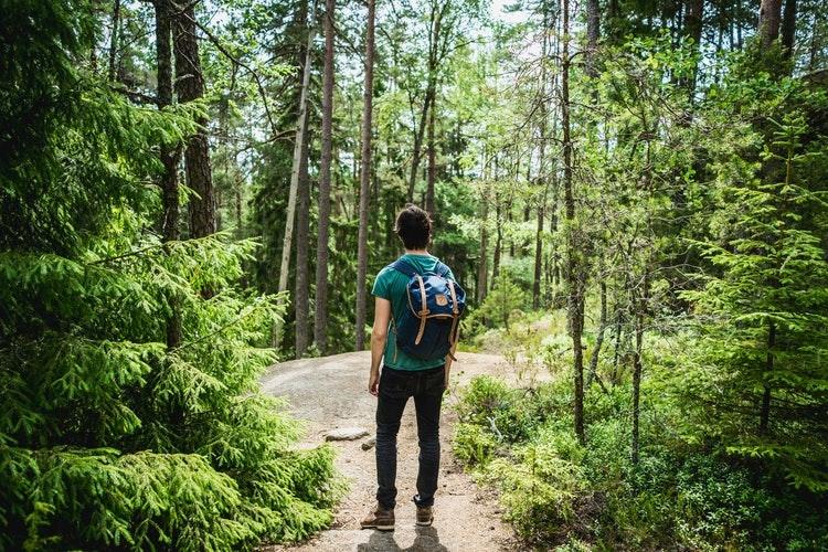 Hiking on trails