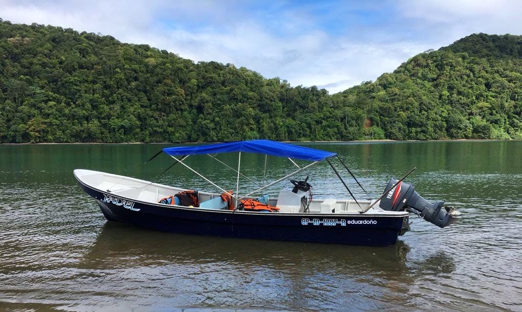Go Fishing On This 4 Persons Center Console in Chocó, Colombia